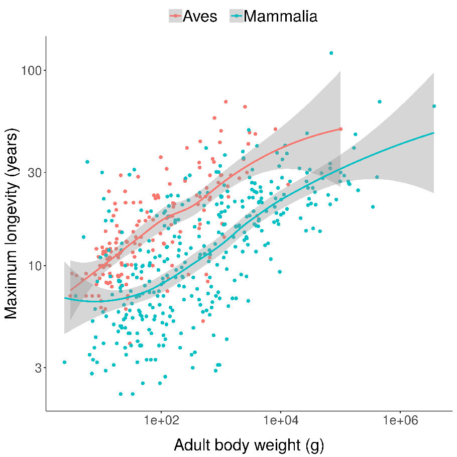 Scatterplots of bird and mammal maximum lifespans vs adult body weight from the AnAge database, with central tendencies fit in R using local polynomial regression (LOESS). Bird species tend to have longer lifespans than mammal species of similar body weight.