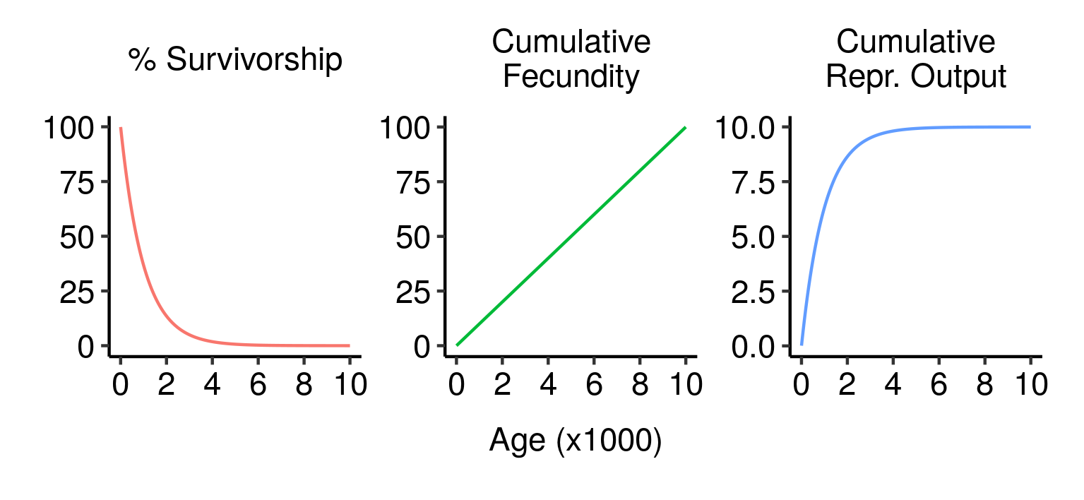 Survivorship, cumulative fecundity and cumulative reproductive output curves for a population of elves with 1% fecundity and 0.1% mortality per year.